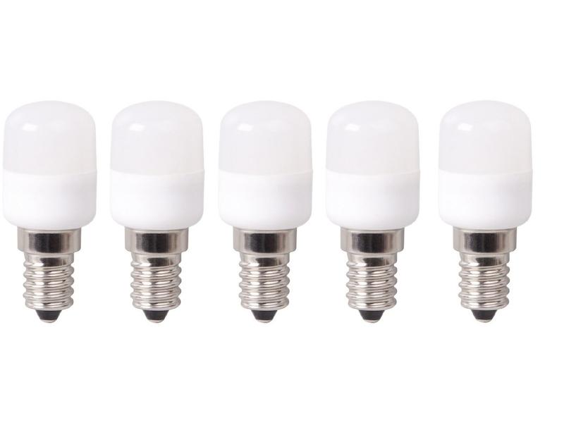 Mini Kühlschrank Mit Licht : Mini led leuchtmittel kühlschrank licht xq lite setpoint